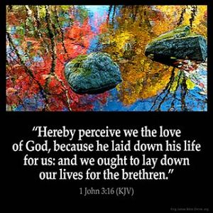 1-John_3-16-2: Hereby perceive we the love of God, because he laid down his life for us: and we ought to lay down our lives for the brethren.
