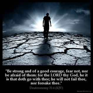 Deuteronomy_31-6: Be strong and of a good courage, fear not, nor be afraid of them: for the LORD thy God, he it is that doth go with thee; he will not fail thee, nor forsake thee.