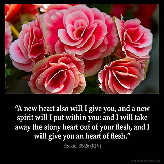 Ezekiel_36-26: A new heart also will I give you, and a new spirit will I put within you: and I will take away the stony heart out of your flesh, and I will give you an heart of flesh.