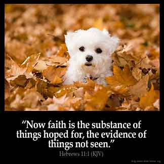 Hebrews_11-1: Now faith is the substance of things hoped for, the evidence of things not seen