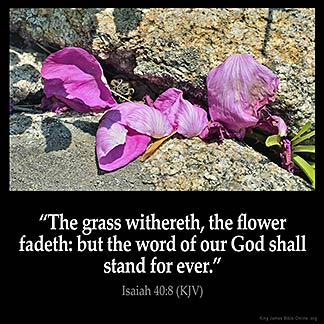 Isaiah_40-8: The grass withereth, the flower fadeth: but the word of our God shall stand for ever