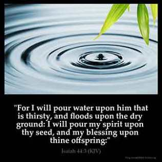Isaiah_44-3: For I will pour water upon him that is thirsty, and floods upon the dry ground: I will pour my spirit upon thy seed, and my blessing upon thine offspring