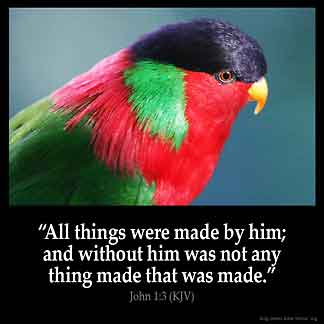 John_1-3: All things were made by him; and without him was not any thing made that was made.