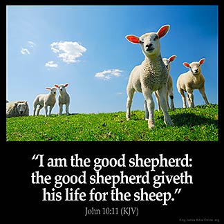 John_10-11: I am the good shepherd: the good shepherd giveth his life for the sheep.