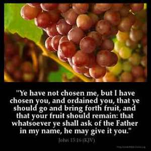 John_15-16: Ye have not chosen me, but I have chosen you, and ordained you, that ye should go and bring forth fruit, and that your fruit should remain: that whatsoever ye shall ask of the Father in my name, he may give it you