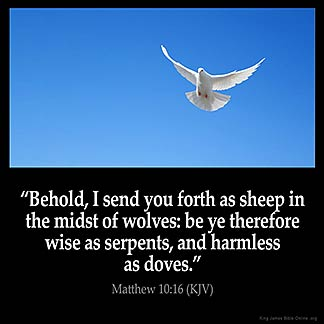 Matthew_10-16: Behold, I send you forth as sheep in the midst of wolves: be ye therefore wise as serpents, and harmless as doves