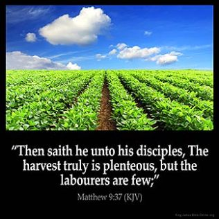 Matthew_9-37: Then saith he unto his disciples, The harvest truly is plenteous, but the labourers are few