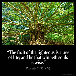 Proverbs_11-30: The fruit of the righteous is a tree of life; and he that winneth souls is wise