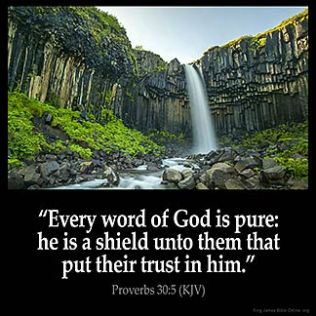 Proverbs_30-5: Every word of God is pure: he is a shield unto them that put their trust in him
