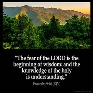 Proverbs_9-10-2: The fear of the LORD is the beginning of wisdom: and the knowledge of the holy is understanding