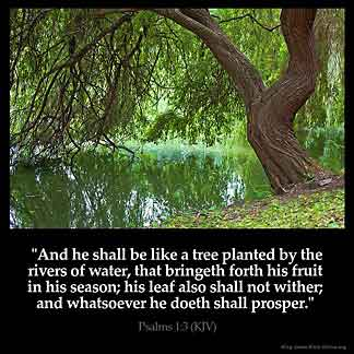 Psalms_1-3: And he shall be like a tree planted by the rivers of water, that bringeth forth his fruit in his season; his leaf also shall not wither; and whatsoever he doeth shall prosper