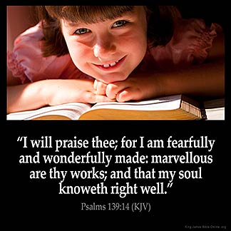 Psalms_139-14: I will praise thee; for I am fearfully and wonderfully made: marvellous are thy works; and that my soul knoweth right well.