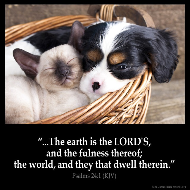 Psalms_24-1: A Psalm of David. The earth is the LORD'S, and the fulness thereof; the world, and they that dwell therein