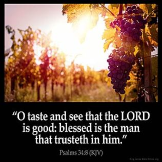 Psalms_34-8: O taste and see that the LORD is good: blessed is the man that trusteth in him.